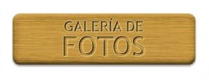 Boton galeria